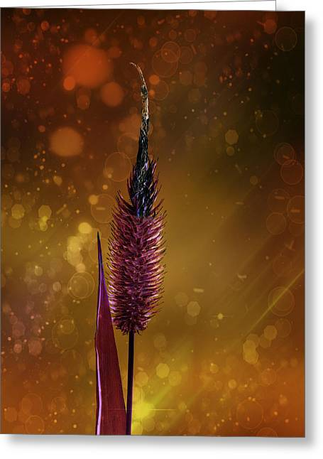 Power Plants Mixed Media Greeting Cards - Flowered blade of grass Greeting Card by Toppart Sweden