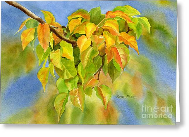 Yellow Leaves Paintings Greeting Cards - Flowering Plum Leaves in Autumn Greeting Card by Sharon Freeman