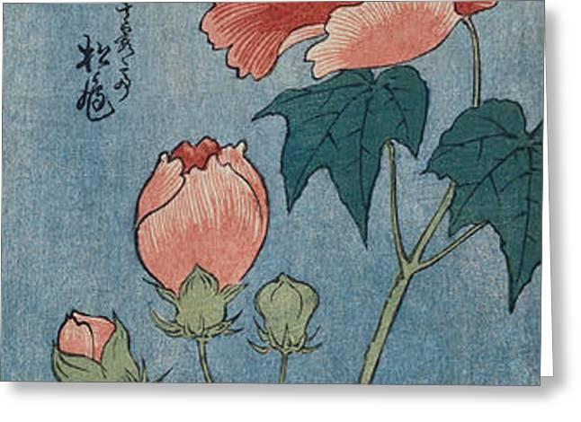Flowering Poppies Tanzaku Greeting Card by Ando Hiroshige