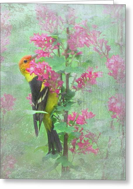 Green And Yellow Greeting Cards - Flowering Tanager Greeting Card by Angie Vogel
