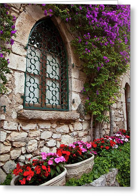 Flowering Vine Grows On Wall Of Home Greeting Card by Brian Jannsen