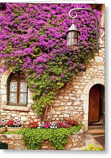 Flowering Vines Grow On The Stone Wall Greeting Card by Brian Jannsen