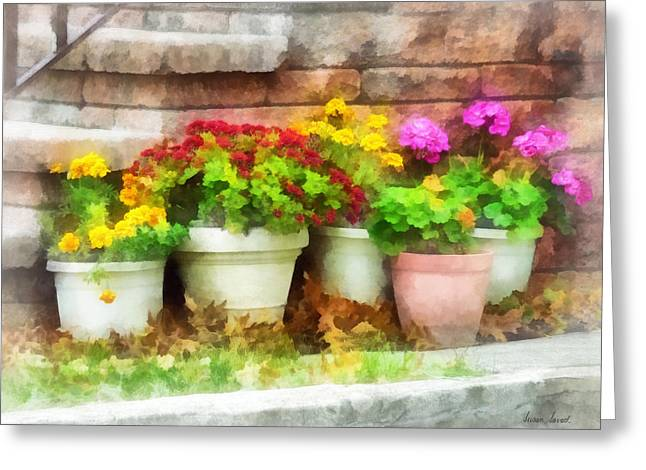 Geraniums Greeting Cards - Flowerpots with Autumn Flowers Greeting Card by Susan Savad