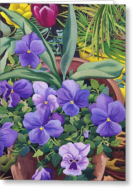 Flower Still Life Greeting Cards - Flowerpots With Pansies, 2007 Wc On Paper Greeting Card by Christopher Ryland