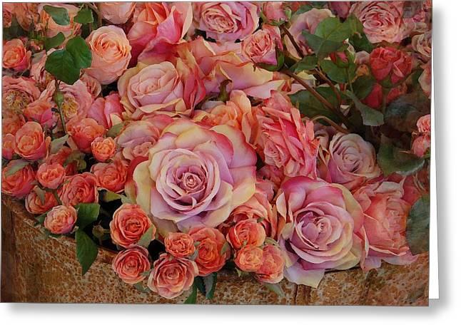 Roses Greeting Cards - Flowers 572 Greeting Card by Joyce StJames