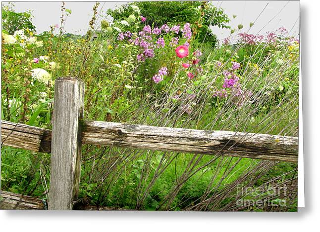 Flowers And Fences Greeting Card by Marilyn Smith