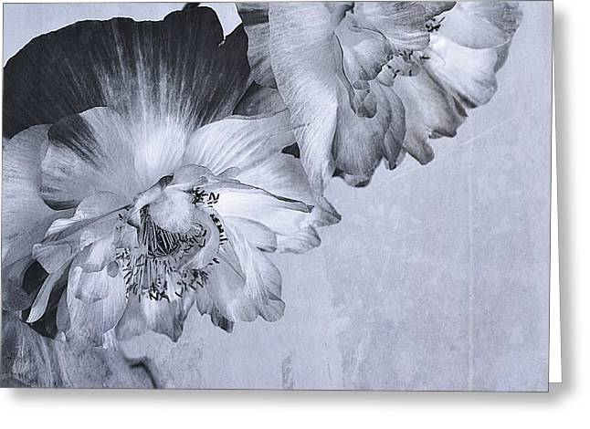 Canadian Photographers Greeting Cards - Flowers And Haiku Greeting Card by Theresa Tahara