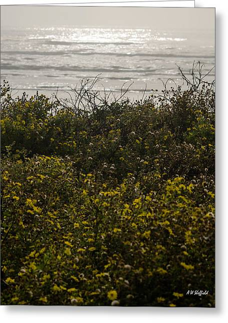 Galveston Greeting Cards - Flowers and the Sea Greeting Card by Allen Sheffield