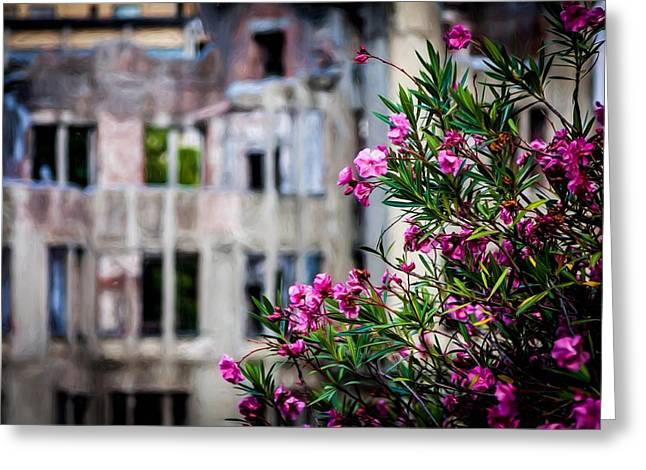 Flowers At Peace Park Greeting Card by Gary Fossaceca
