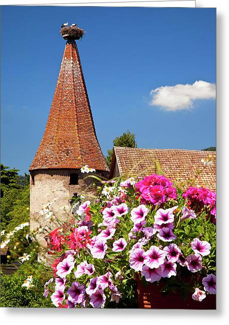 Flowers Bloom Below An Ancient Turret Greeting Card by Brian Jannsen