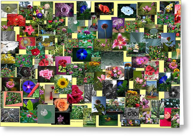 Coller Greeting Cards - Flowers Collage Horizontal Greeting Card by Thomas Woolworth