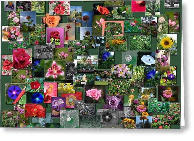 Coller Greeting Cards - Flowers Collage Square Greeting Card by Thomas Woolworth