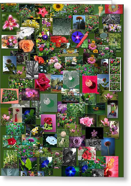 Coller Greeting Cards - Flowers Collage Vertical Greeting Card by Thomas Woolworth