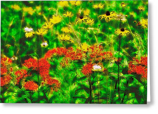 Paint Photograph Greeting Cards - Flowers Galore - Blue Ridge Parkway II Greeting Card by Dan Carmichael