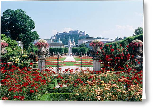 Garden Scene Greeting Cards - Flowers In A Formal Garden, Mirabell Greeting Card by Panoramic Images