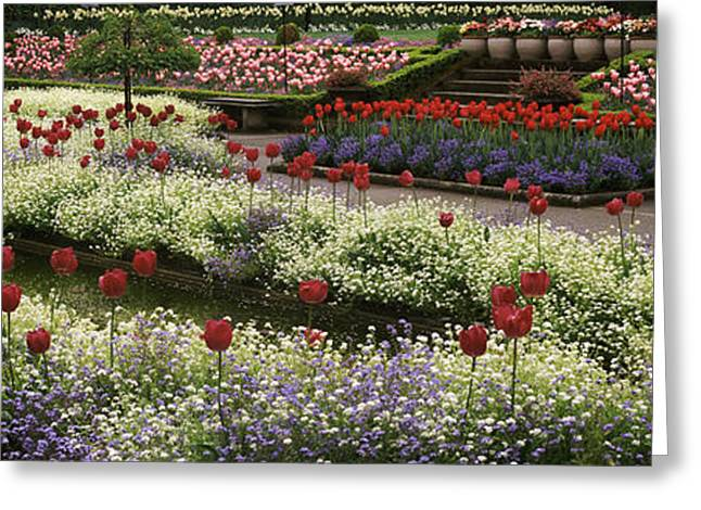 Flowers In A Garden, Butchart Gardens Greeting Card by Panoramic Images