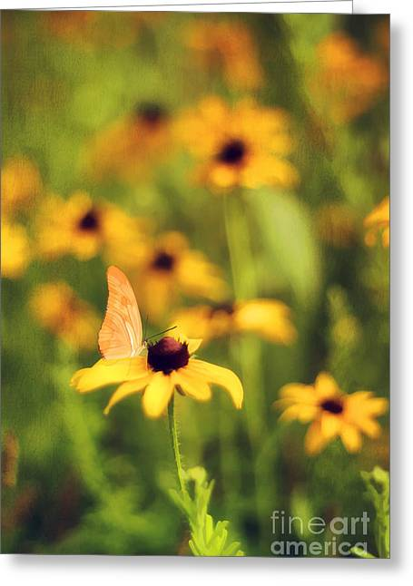 Floral Digital Art Greeting Cards - Flowers of Summer Greeting Card by Darren Fisher