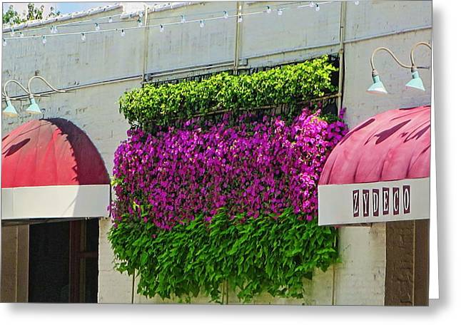 Purple Awnings Greeting Cards - Flowers on the Wall Greeting Card by Rene Barger