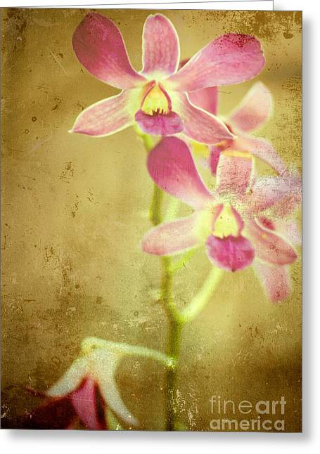 Flowers Greeting Card by Sophie Vigneault