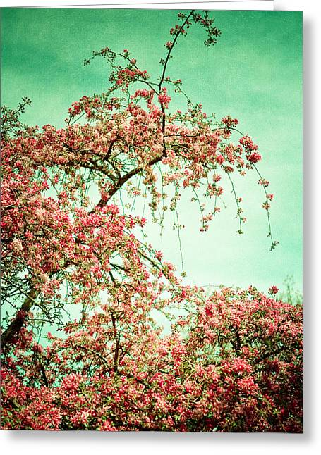 Joy Stclaire Greeting Cards - Flowers Touch the Sky Greeting Card by Joy StClaire