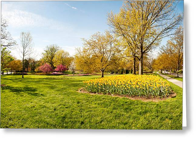 Garden Scene Greeting Cards - Flowers With Trees At Sherwood Gardens Greeting Card by Panoramic Images