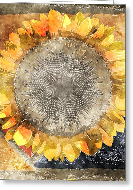 Flowers Digital Art Greeting Cards - Flowersun - 09279gmn22b3a22 Greeting Card by Variance Collections