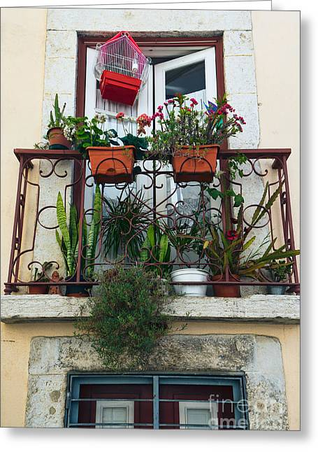Outlook Greeting Cards - Flowery balcony in Alfama Lisbon Greeting Card by Frank Bach