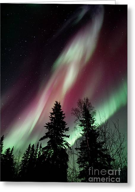Northern Greeting Cards - Flowing Colours Greeting Card by Priska Wettstein