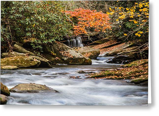 Pisgah National Forest Greeting Cards - Flowing Fall Waters Greeting Card by John Haldane