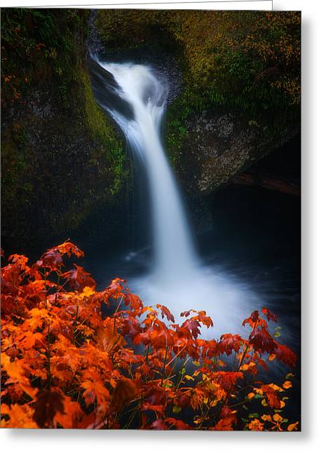 Landscape Framed Prints Greeting Cards - Flowing into Fall Greeting Card by Darren  White