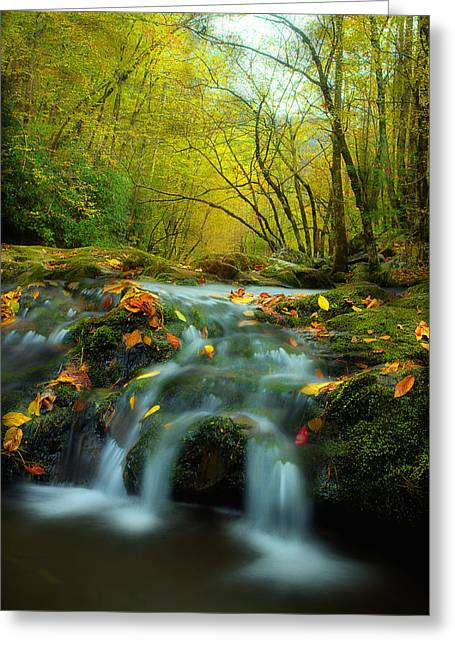 Fall River Scenes Greeting Cards - Flowing October Greeting Card by Michael Eingle