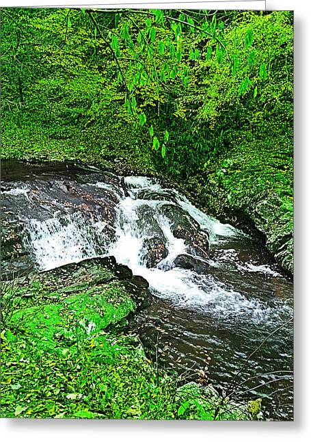 Birght Greeting Cards - Flowing Stream Greeting Card by John Takai