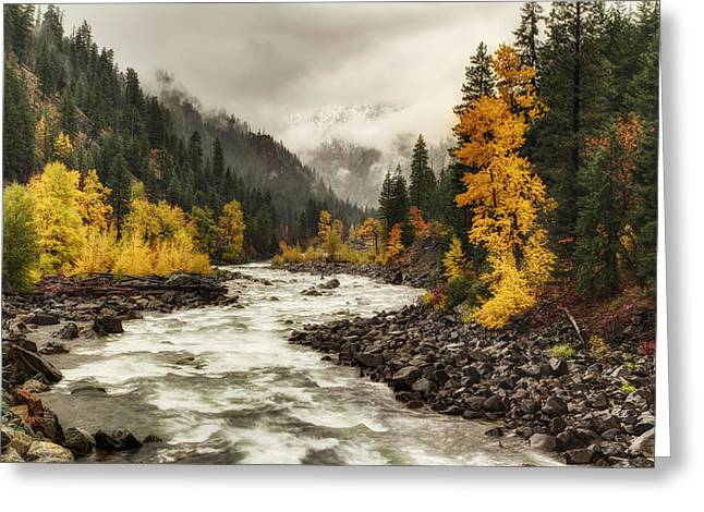 Fall Landscape Art Greeting Cards - Flowing through Autumn Greeting Card by Mark Kiver