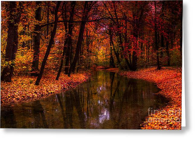 Hannes Cmarits Greeting Cards - Flowing Through The Colors Of Fall Greeting Card by Hannes Cmarits