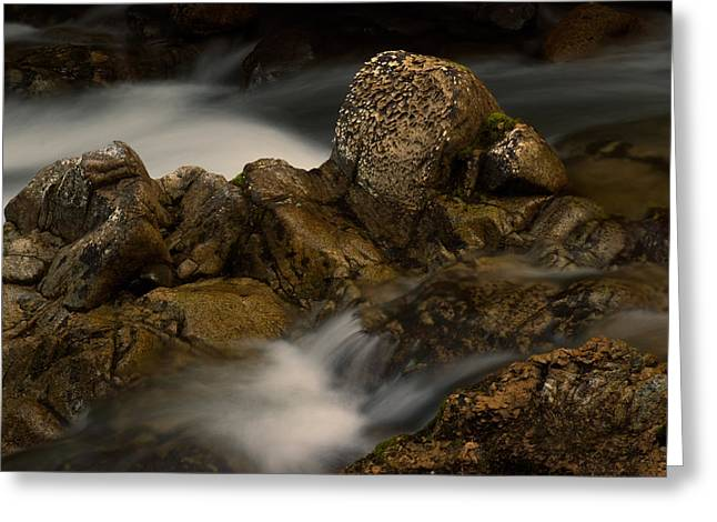 Provincial Park Bc Greeting Cards - Flowing Water Greeting Card by Randy Hall