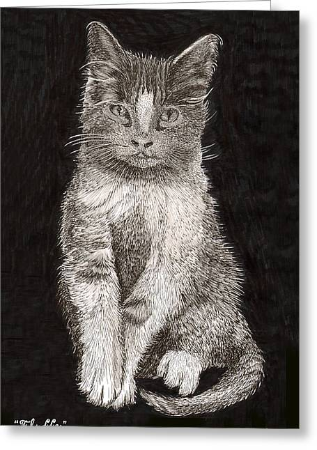 Cute Kitten Drawings Greeting Cards - Fluffy El Gato Greeting Card by Jack Pumphrey