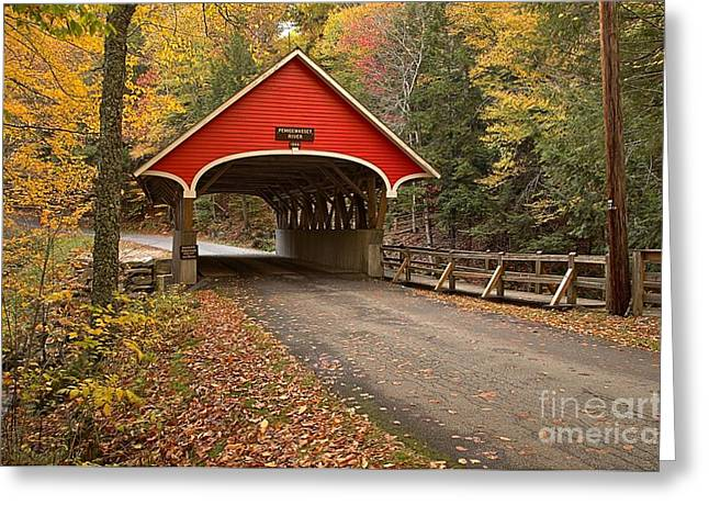 New England Covered Bridges Greeting Cards - Flume Gorge Covered Bridge Fall Colors Greeting Card by Adam Jewell