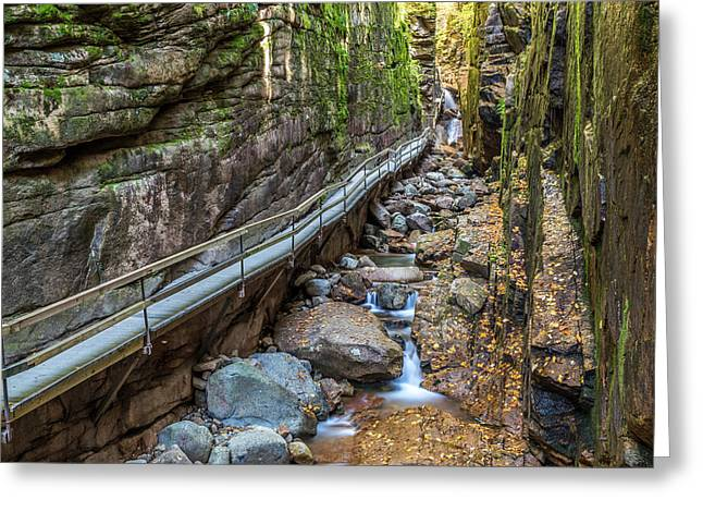 Narrow Canyons Greeting Cards - Flume Gorge in Autumn Greeting Card by Pierre Leclerc Photography