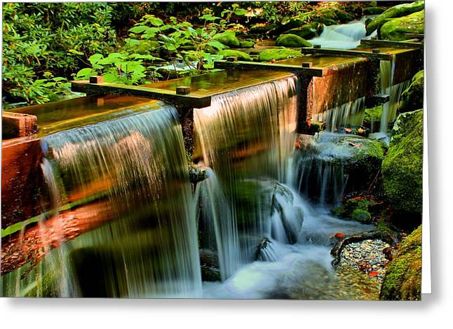Grist Mill Greeting Cards - Flume Overflow  Greeting Card by Carol R Montoya