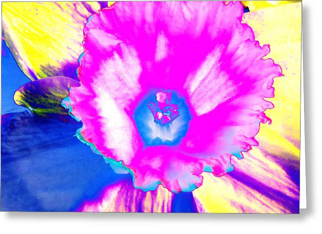 Fluorescent Daffodil  Greeting Card by Shawna Rowe