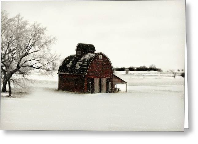 Barn Digital Art Greeting Cards - Flurry Greeting Card by Julie Hamilton
