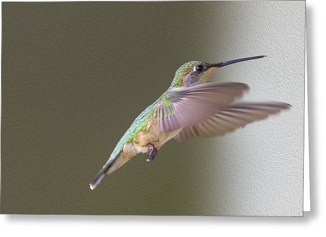 Trochilidae Greeting Cards - Flutter Hummer Greeting Card by Bill Tiepelman