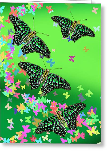 Debbie Chamberlin Greeting Cards - Flutter Wings Greeting Card by Debbie Chamberlin