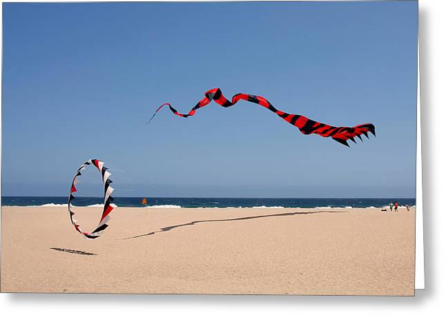 Fly A Kite - Old Hobby Reborn Greeting Card by Christine Till
