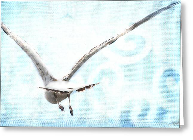 Flying Seagull Digital Art Greeting Cards - Fly Away Greeting Card by Renee Forth-Fukumoto