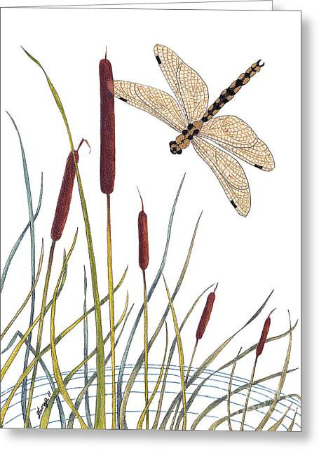Stanza Widen Greeting Cards - Fly High Dragonfly Greeting Card by Stanza Widen