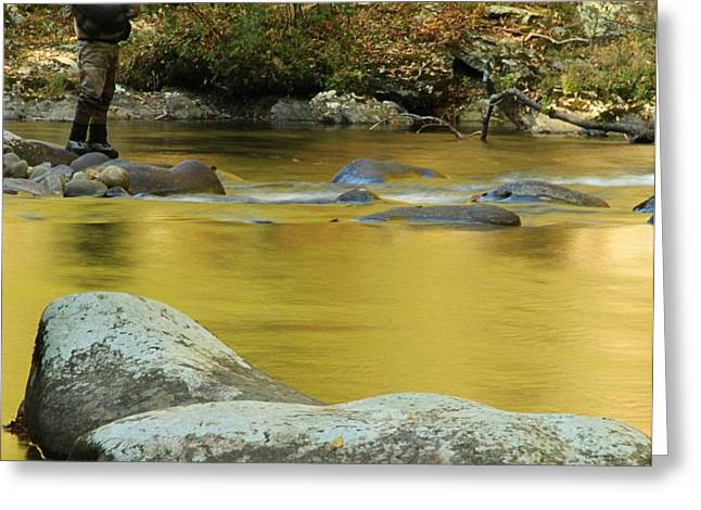Gatlinburg Tennessee Greeting Cards - Fly Fishing In Autumn Greeting Card by Dan Sproul