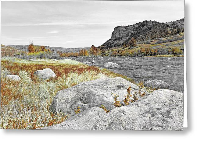 Field Rocks Greeting Cards - Fly Fishing Stillwater River Montana Selective Color Greeting Card by Jennie Marie Schell