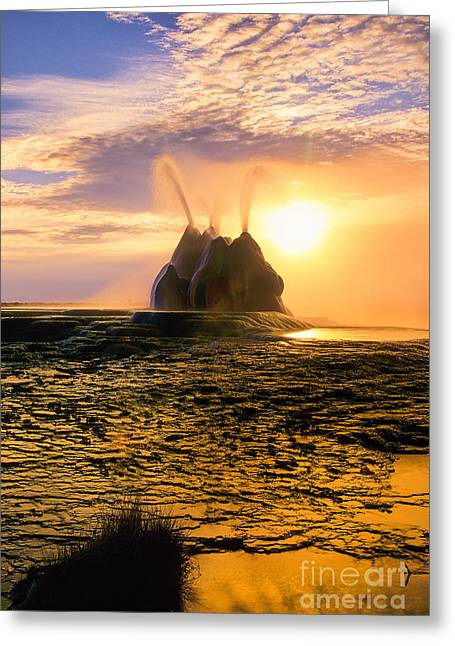 Alga Greeting Cards - Fly Geyser Sunrise Greeting Card by Inge Johnsson