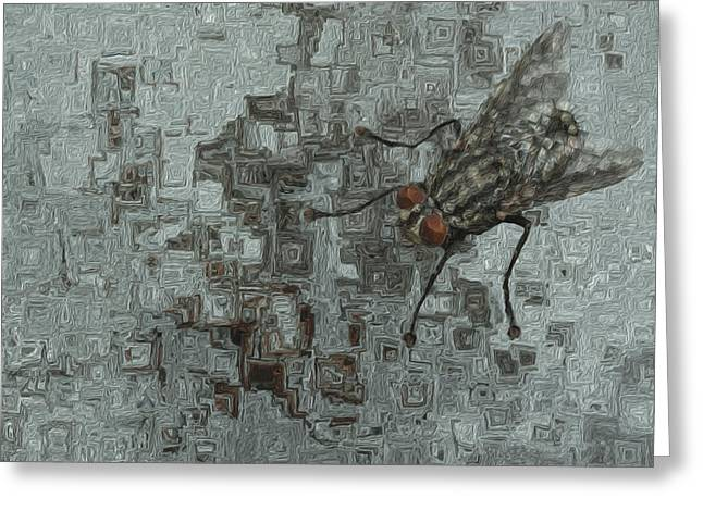 Fly On The Wall Greeting Card by Jack Zulli